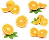 Collection of pieces of freshly cut orange — Stock Photo