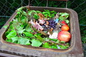 Household bio organic food waste — Foto Stock