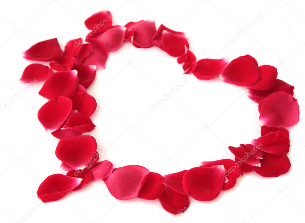 Red heart made of rose-petals on a white background.  Stock Photo #5860023