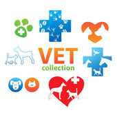Vet-collection — Stock Vector