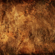 Old grunge background — Stock Photo