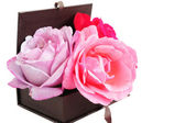 Roses in a Box — Stock Photo