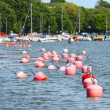 Red Buoys — Stock Photo