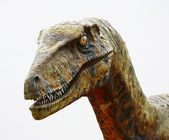 Deinonychus dinosaur head on white — Stock Photo