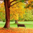Stock Photo: Autumn in Helsinki Public Garden