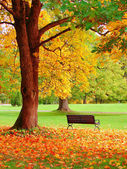 Autumn in Helsinki Public Garden — Stock Photo