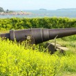 old russian cannon in suomenlinna sveaborg helsinki finland — Stock Photo