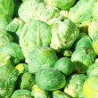 Stock Photo: Brussel sprouts