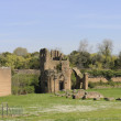 Stock Photo: Middle ages ruins of circus