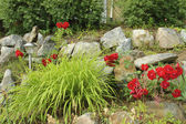 Rock garden med solenergi lampa — Stockfoto