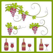 Grape design elements.Vector illustration. — Stock Vector