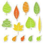 Set of leaves. Vector illustration. — ストックベクタ