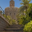 La Torre del Oro — Stock Photo