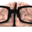 Brain with Glasses — Stock Photo #5401270