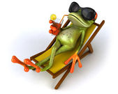 Coll frog — Stock Photo