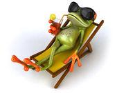 科尔青蛙 — 图库照片
