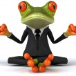 Zen frog - Stock Photo