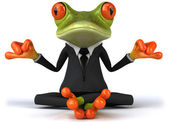 Zen frog — Stock Photo