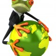 Frog protecting the world — Stock Photo