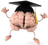Student Brain — Stock Photo