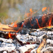 Campfire. Background of Flames and Glowing Embers — Stock Photo #6107353