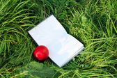 Open book and the nectarine is on the green grass — Stock Photo