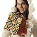 The christmas shopping — Stock Photo