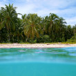 Tropical beach in Costa Rica — Stock Photo