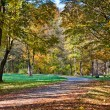 Walk in the park — Stock Photo #5641132