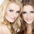 Two smiling girl friends - blond and brunette - Stock Photo
