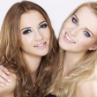 Two smiling girl friends - blond and brunette — Stock Photo #6494250