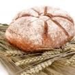 Bread on grain — Stock Photo #5955006