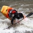 Kayaker — Stock Photo #5601428