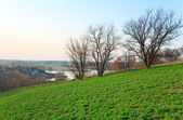 Spring country landscape. — Stock Photo