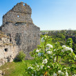 Stock Photo: Ancient fortress ruins