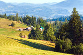 Mountain village (summer countryside landscape) — Stock Photo