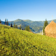 Summer mountain village outskirts — Stock Photo