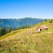 Stock Photo: Summer mountain farmyard