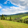 Stock Photo: Summer mountain village