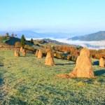 Autumn misty morning mountain hill — Stock Photo #5637567