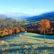 Stock Photo: Autumn misty morning mountain valley