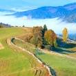 Autumn misty morning mountain hill — Stock Photo