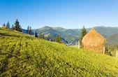 Afueras de la aldea de montaña de verano — Foto de Stock