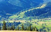 Small summer mountain village — Stock Photo