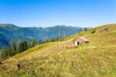夏の山農場 — ストック写真