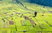 Small summer mountain village outskirts — Stock Photo