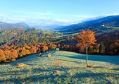 Autumn misty morning mountain valley — Stockfoto