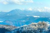 第一个冬季雪和山山毛榉林 — 图库照片