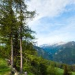 Alps summer view — Stock Photo #6111804