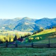 Summer mountain view — Stock Photo